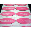 192 Per Case Assorted Truth or Dare Magnets
