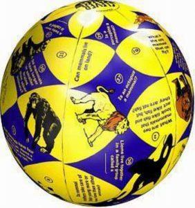 24 Wholesale Inflatable Balls
