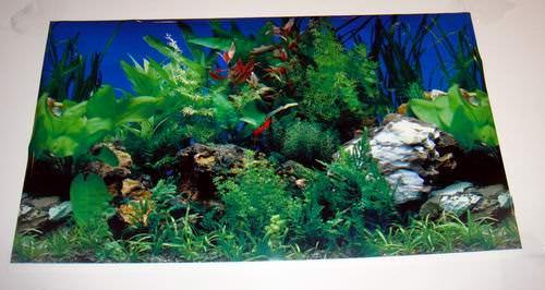Buy Wholesale Scenic 2 Sided Plastic Aquarium Poster