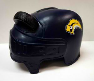 NHL Buffalo Sabres Novelty Helmethead